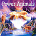 Niall - Power Animals