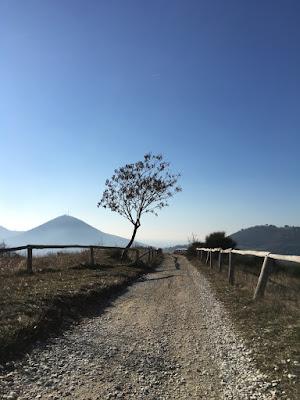 Colli Euganei - Mottolone