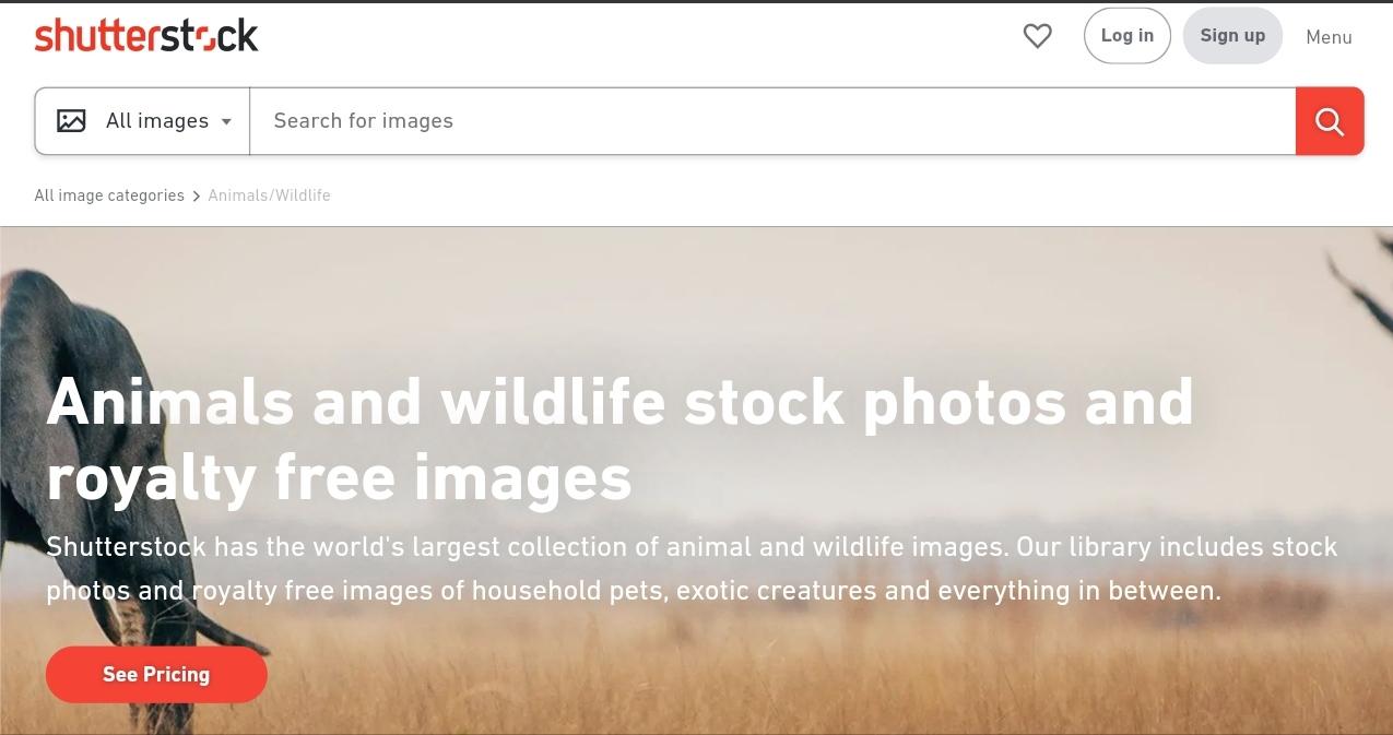 Shutterstock, shutterstock contributer, shutterstock photo sell, online photo sell,