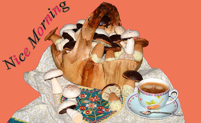 mashroom-breakfast-in-the-early-morning-its-nice-for-health