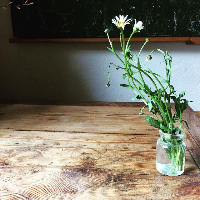 die guten Dinge blog Samstag, Woche, Freitagsblumen