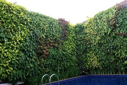 Jasa tukang vertical garden bali, denpasar, badung, vertical garden bali, jasa taman vertical bali,