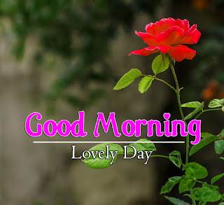 New Good Morning 4k Full HD Images Download For Daily%2B61