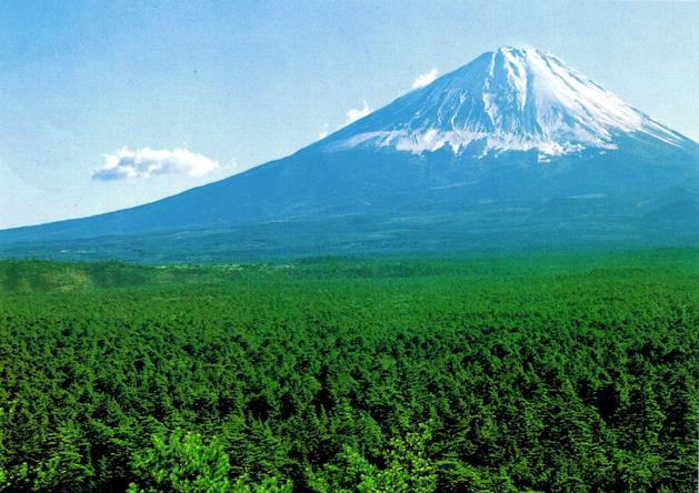 tsunami japão wikipedia 2011
