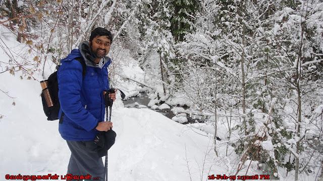 Tamanawas Falls Snowshoe Hike