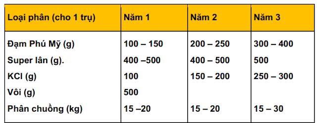 Công thức bón phân cho tiêu từ năm thứ 3