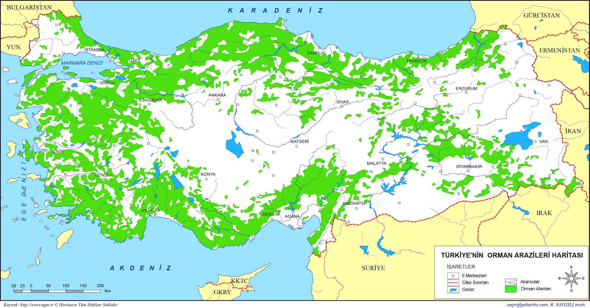 Türkiye'nin orman haritası