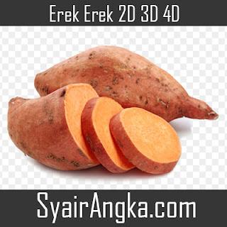 Erek Erek Ketela 2D 3D 4D