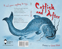 Catfish and After by Gene Hult from Brighten Press