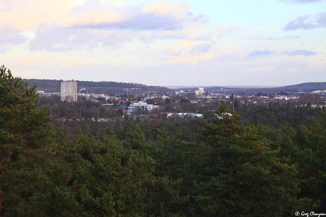 La Ville de Fontainebleau est cernée par les pins vue depuis le Point de vue de la Bombarde