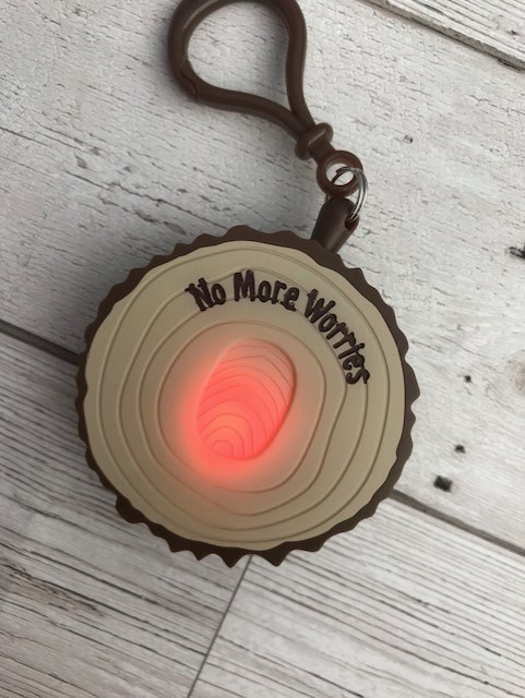Plastic mini plaque that is made to look like wood with No More Worries written on it and a finger print that is glowing red