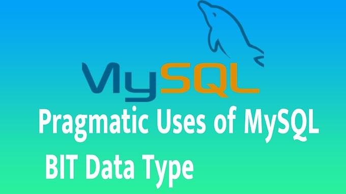 Pragmatic Uses of MySQL BIT Data Type