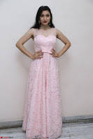 Sakshi Kakkar in beautiful light pink gown at Idem Deyyam music launch ~ Celebrities Exclusive Galleries 035.JPG