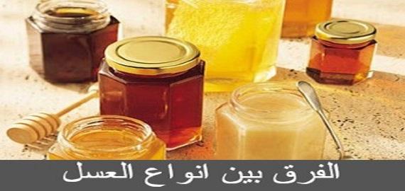 الفرق بين انواع العسل