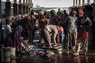 African fish market