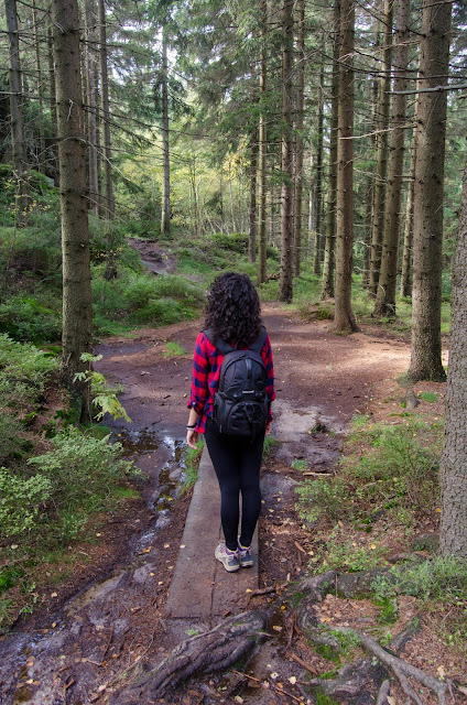 góry | krajobraz | Czechy | podróże | loki | włosy | kręcone | las | Broumovske Steny