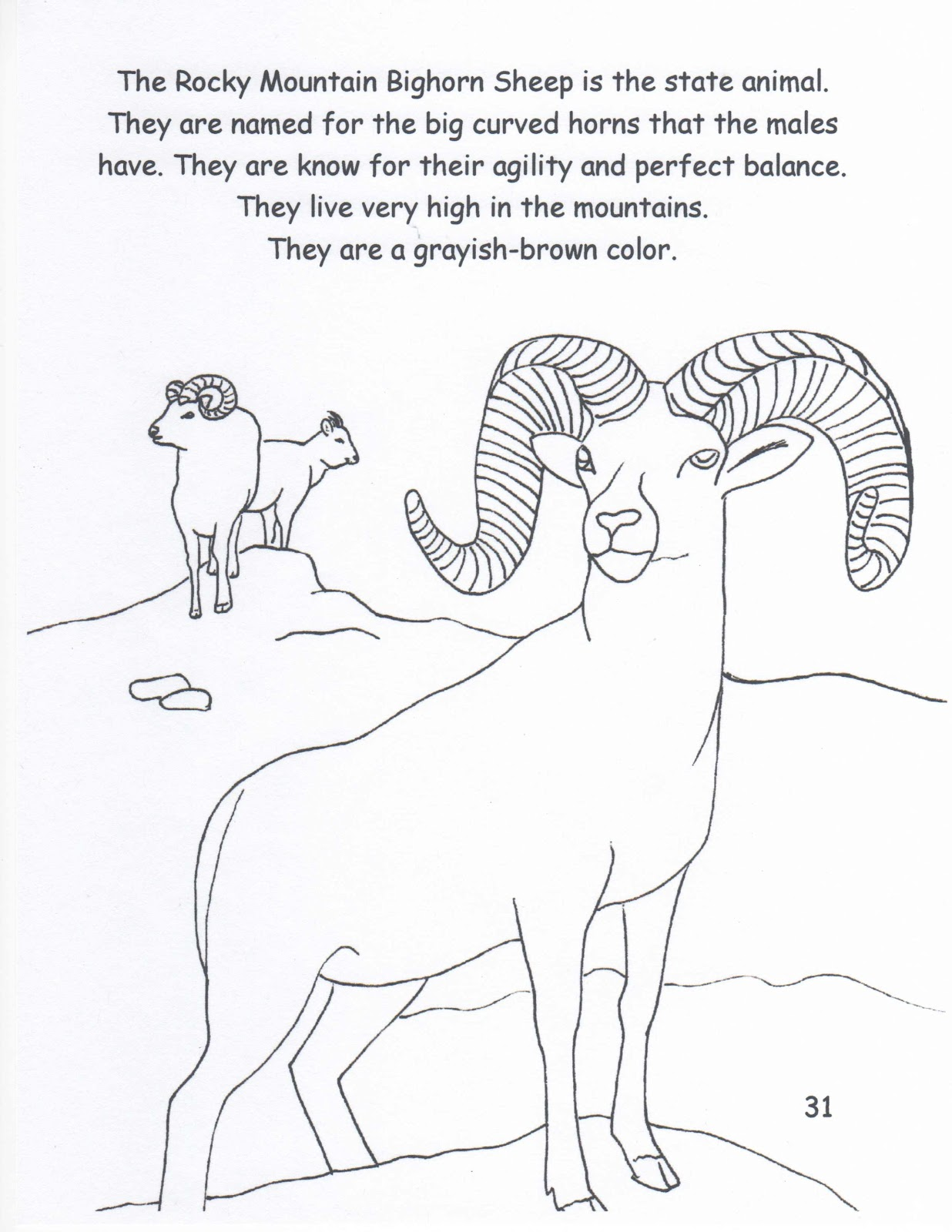 Animal Drawings Coloring Pages | Bighorn Sheep animal ... | 1600x1236