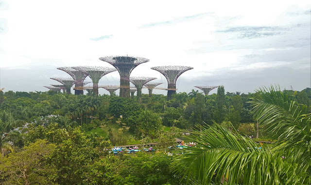 Gardens by the Bay - vertical gardens