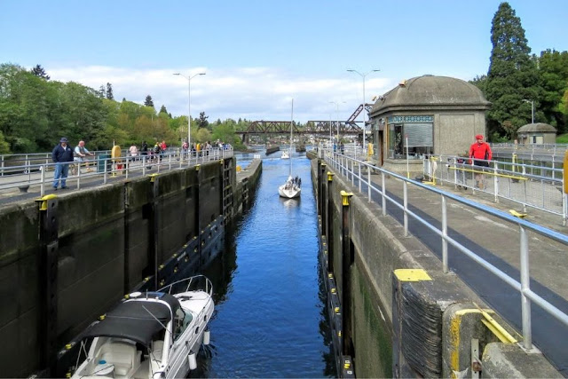 Seattle in a Day: Ballard Locks