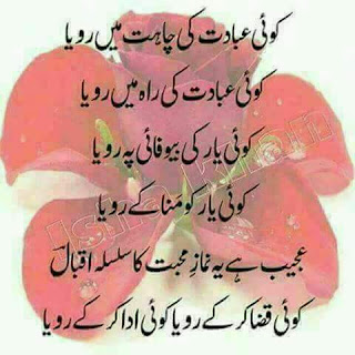 Koi Ibadat ki Chahat main Roya , Koi Ibadat ki Rah main Roya | Allama Iqbal Poetry - Urdu Poetry Lovers