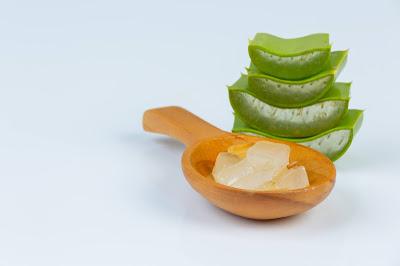 Aloe Vera: benefits for hair, skin and body