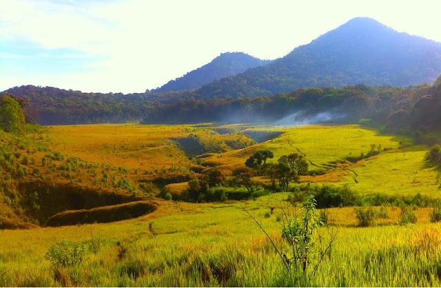 foto tegal panjang gunung papandayan