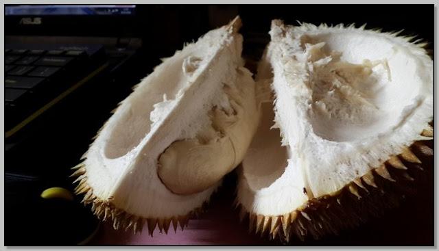 Manfaat Durian.