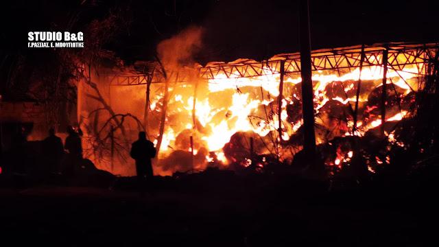Μάχη των πυροσβεστών στην Αργολίδα με τις φλόγες σε φάρμα στο Κεφαλάρι (βίντεο)
