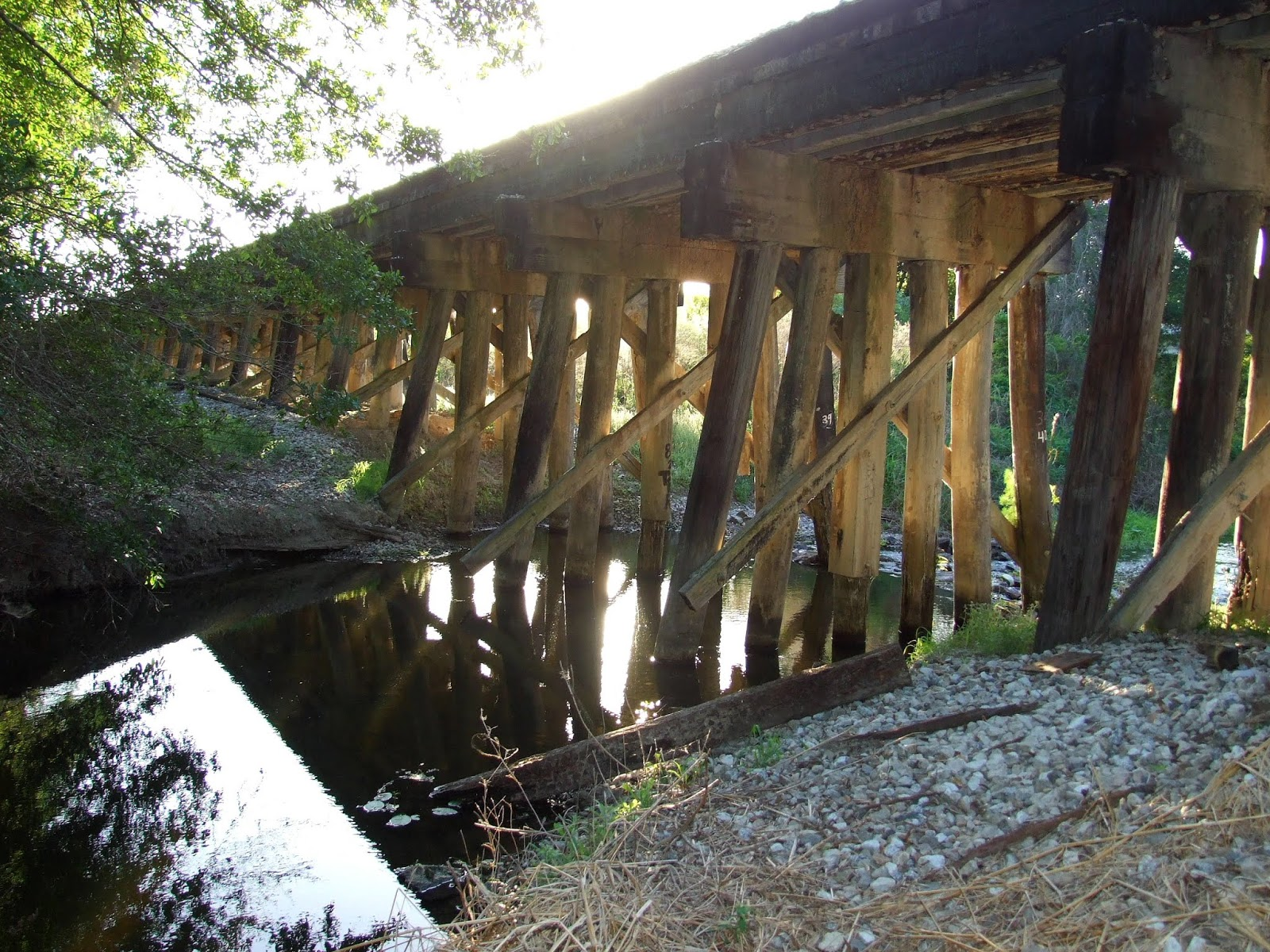 Bone Valley Modeler: The Bridges of Hillsborough, Manatee ...