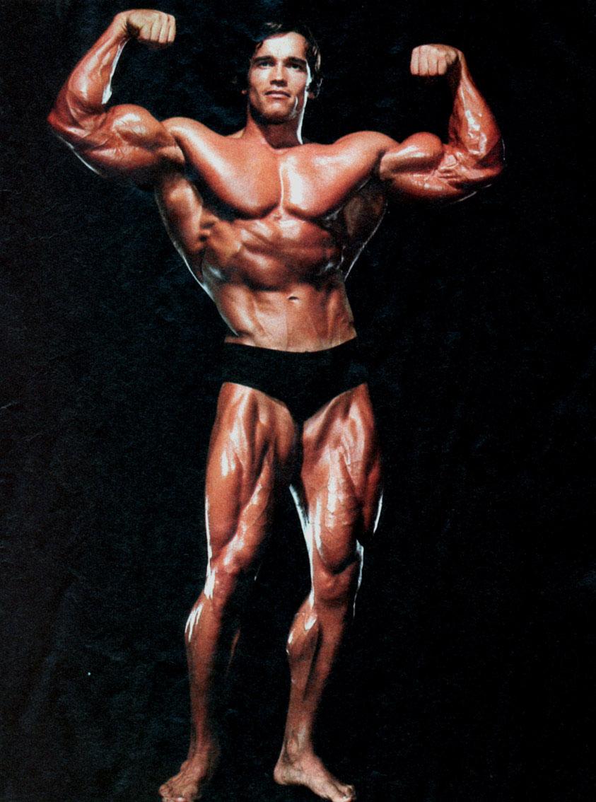 Arnold Schwarzenegger ~ BODYBUILDING EXPERT