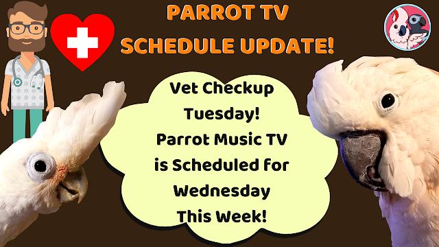 PARROT MUSIC TV SCHEDULE UPDATE