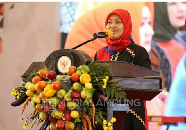 Wakil Gubernur Lampung Chusnunia Chalim menutup secara resmi Pameran Lampung Craft 2020