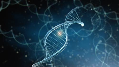 Multiplex Nucleic Acid Assays
