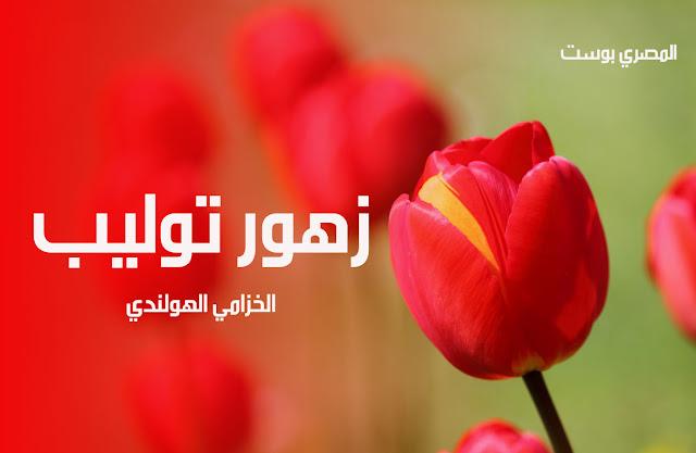 صور ورد - صور زهور - ورد توليب - الخزامي الهولندي