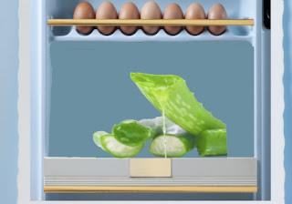 store aloe vera in fridge