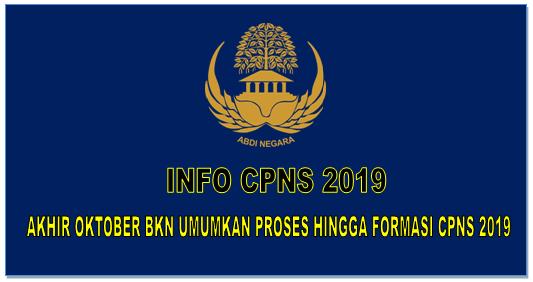 Info CPNS 2019, Akhir Oktober BKN Umumkan Proses Hingga Formasi CPNS 2019