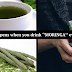 The Miracle Tree That Could Cure 300 Diseases Including Tumors And Diabetes With