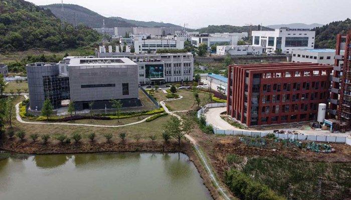 Wuhan virology organization chief says lab had 'three' bat coronaviruses