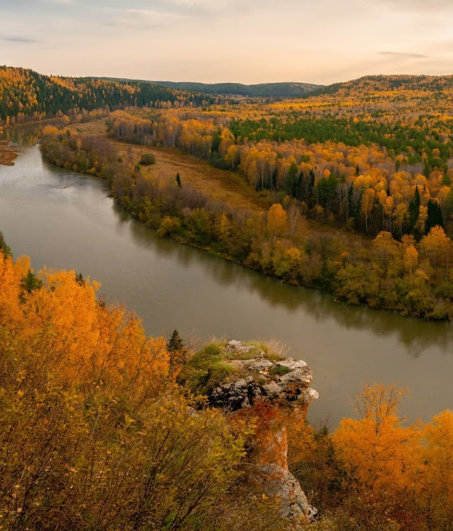 Russia turned into the golden, the beautiful touching heart when in autumn