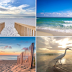 Gulf Shores Condo Sales and Vacation Rentals
