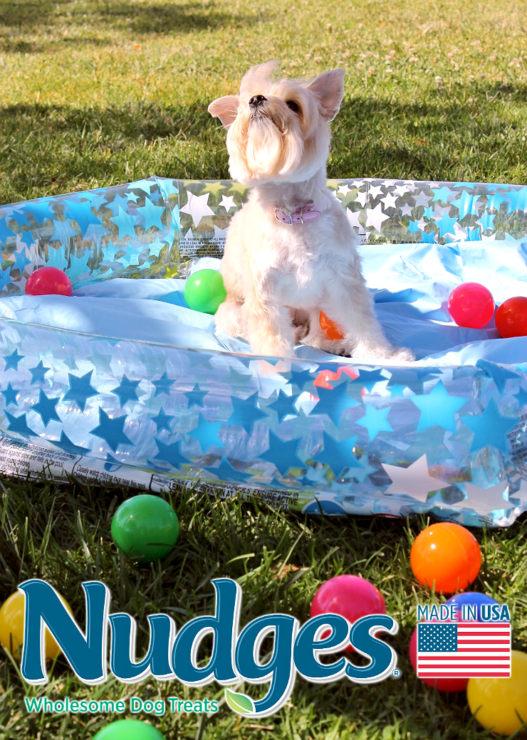 This Summer #NudgeThemBack with a DIY Ball Pit and wholesome, made in the U.S.A, Nudges® dog treats from Walmart. #AD