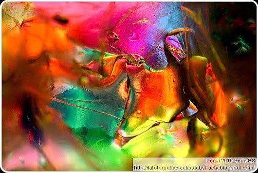 Se reencarna tu sensualidad en luz coloreada - your sensuality is reincarnated in colored light