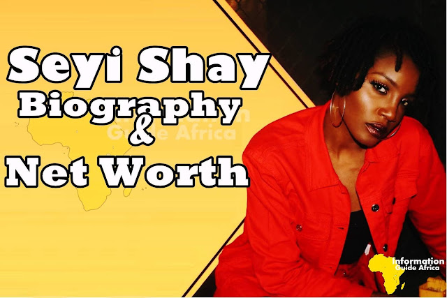 Seyi Shay Biography, Family, Age, Net Worth, Songs And All You Need To Know About Her