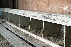 Provide nest boxes where your hens will lay their eggs.