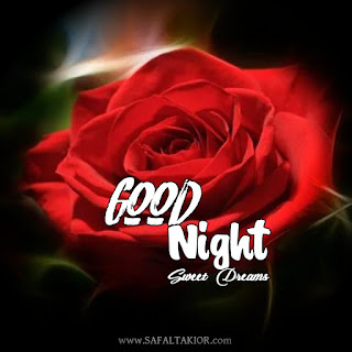 Very Latest 150+ Good night images,Photos& Pictures 2021|romantic, rose flower good night images