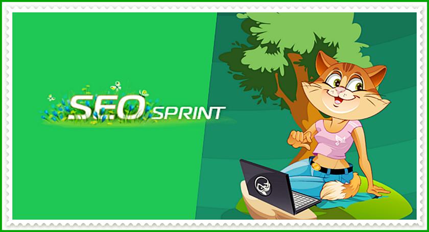 Seo sprint – реальный способ заработка в Интернете