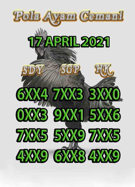 syair ayam cemani 17-04-2021