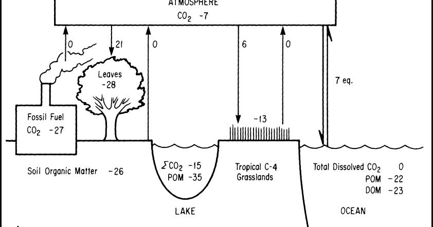 isotopi più utili utilizzati nella datazione geologica ultimi giorni santi incontri siti