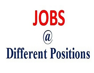 Jobs @ different position-Letsupdate