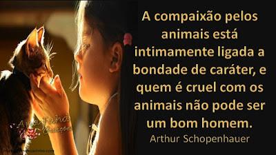 A compaixão pelos animais está intimamente ligada a bondade de caráter, e quem é cruel com os animais não pode ser um bom homem. Arthur Schopenhauer